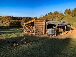 Die hügelige Landschaft der Eifel. Der Himmel ist blau, die Sonne scheint. In der Mitte steht ein Stall, in dem Lamas gehalten werden.