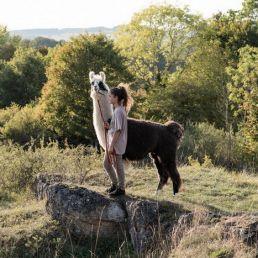 Ein Lama wird von einem jungen Mädchen an einer Leine gehalten. Beide stehen auf einem Felsen in der Eifel.